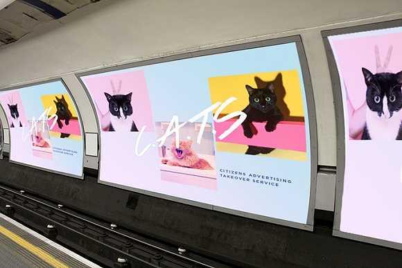 地铁广告商业化太重 伦敦的创意者呼吁把海报换成喵星