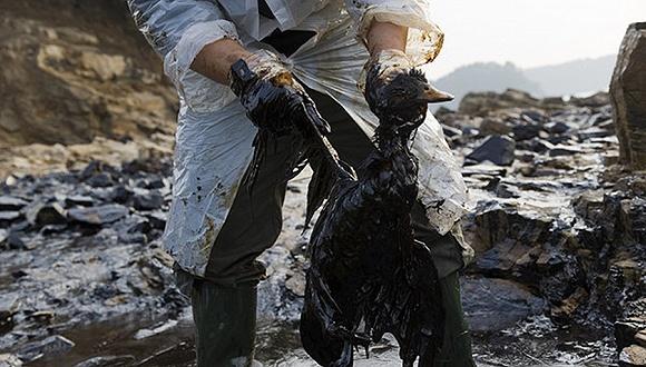 中国修法加大海洋环境污染处罚力度 生态环境敏感区划图片