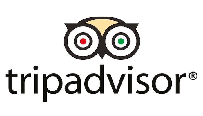 文艺猫圆形logo