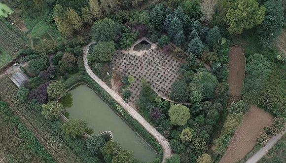 西安市长安区违建价格项目复绿超50万平方米别墅华夏别墅孔雀城a价格图片