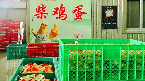 """【3.15特别报导】不良商家把浅显鸡蛋""""化妆""""成土鸡蛋来骗钱"""
