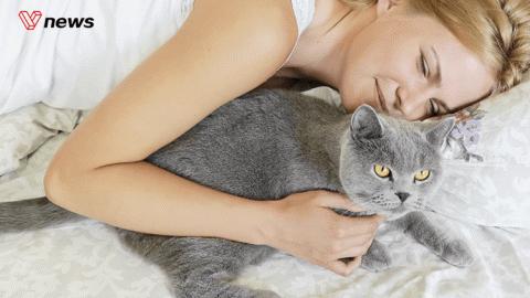 为甚么单身单身的女性幸福感更高