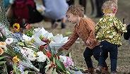 血案映照新西兰枪支法巨大年夜马脚,新西兰当局决计控枪