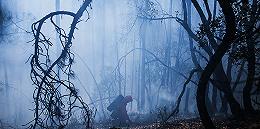 木里森?#21482;?#28798;确认为雷击火,着火点为一棵80年树龄云南松