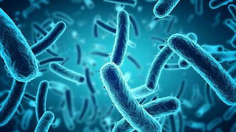 美国超级真菌爆发,致死率60%,中国有18例?先别?#20445;?#20320;得了解这些真相