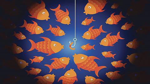 别学华为、小米、海底捞了,那些办理方剂治不了小公司病