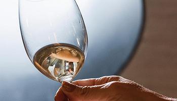 澳大利亚出了一系列线上葡萄酒课程,期望让你更了解本人手里的这瓶澳洲酒