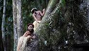 【深度】你是否已經忘記了亞馬孫雨林?