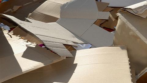 廢紙價格再創年內新高