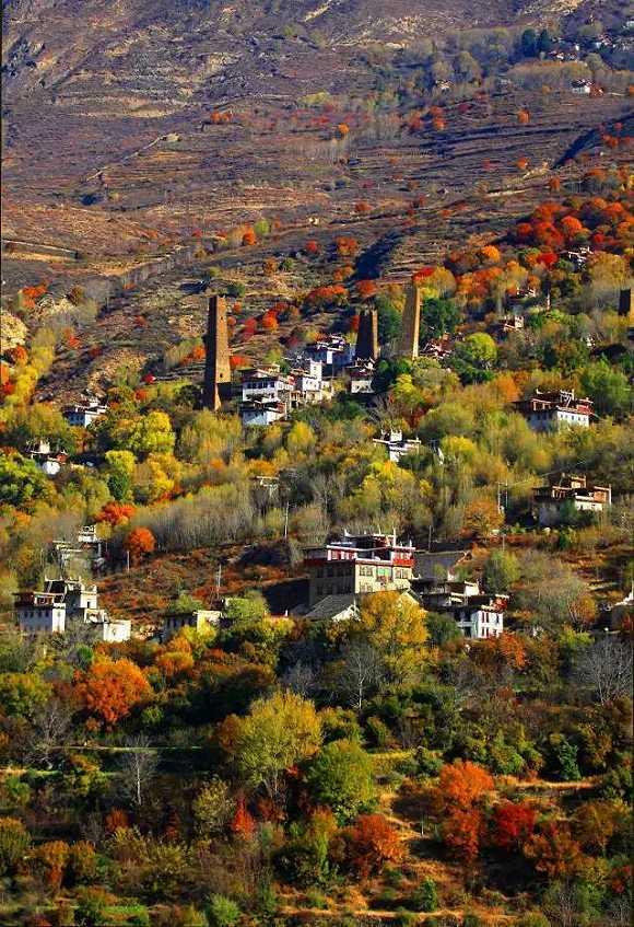 村庄风景图背面