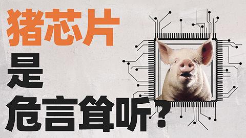 為什么我們很難吃到便宜豬肉了?