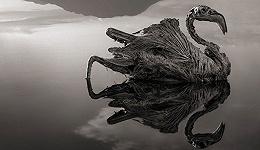 把动物都变成石头 非洲这个湖好神奇