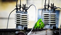 【华尔街见闻】差别电价:重塑中国钢铁业成本曲线