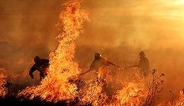 李克强、汪洋就俄罗斯森林火灾烧入大兴安岭林区作重要批示