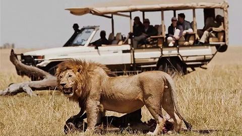 肯尼亚   重返贵族时代,3家颠覆想象的奢华营地
