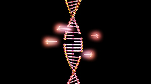 基因编辑原来是这么回事,一张图看懂了