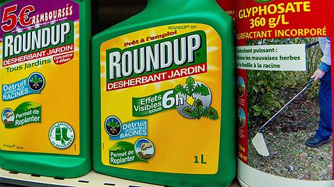 因致癌风险法国禁售草甘膦除草剂,欧洲食安局报告被指抄袭业内软文