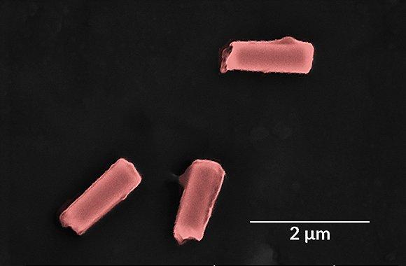 【工业之美】这群隐藏在血液中的抗菌机器人,会成为抗生素的取代者