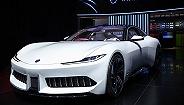 """【2019上海车展】从某种角度说,这就是一场""""新能源汽车""""的大show"""