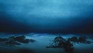 美国探险家打破马里亚纳海沟深潜纪录:除了新物种,还发现了糖纸和塑料袋