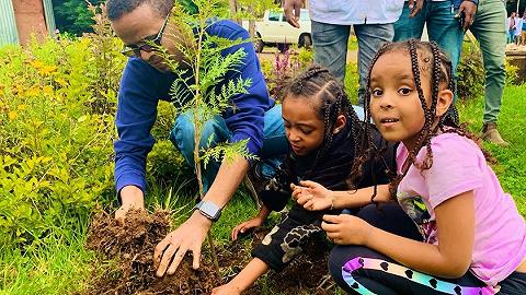 12小时种下3.5亿棵树,埃塞俄比亚为抗旱也是拼了