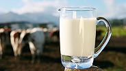 """高端白奶市场迎来增长,致优娟姗鲜牛奶满足你的""""品质""""追求"""