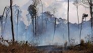 巴西出动军机压制火情,G7为支持亚马孙雨林灭火准备协议