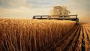 """擴面提質增試點 農業保險高質量發展""""設計圖""""出爐"""