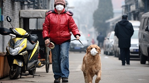地方新闻精选 | 安徽省发布重污染天气省级橙色预警 浙江拟规定小学生晚9点做不完作业可拒绝完成