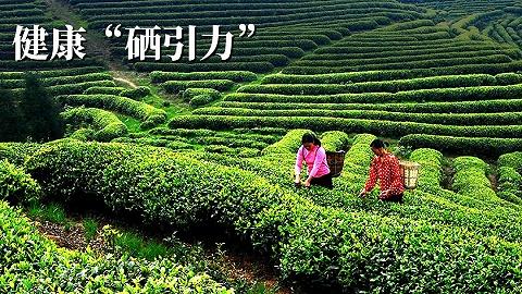 中国·重庆(江津)第二届富硒产业发展大会