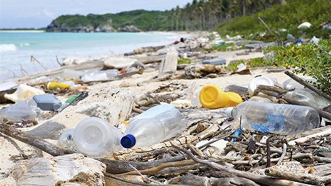 地方新闻精选|广东湛江海边现1公里垃圾带 湖北16家A级旅游景区被摘牌