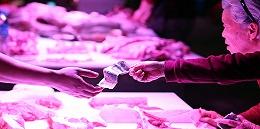 生猪价格7个月来首次下跌,11月上旬环比下降3.4%