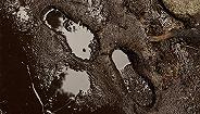 14800吨有毒污泥跨省转运,黑了长江肥了谁?