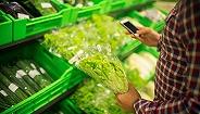 生鲜电商呆萝卜爆雷:欠薪超3000万,产研团队被迫解散