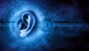 声纹识别已用于部分银行:声音能模仿,声纹还可靠吗