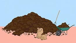 人类化粪便为肥料的历史