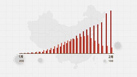 數據   (截至2月13日24時)新型冠狀病毒感染肺炎病例通報例