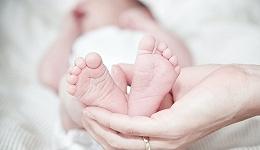 """爱婴室净利润下滑29.18%,""""母婴零售第一股""""困顿中前行"""