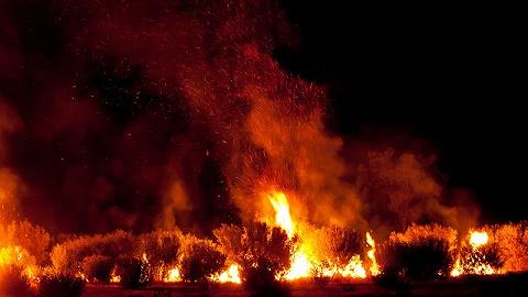 地方新闻精选 |香格里拉森林火灾明火扑灭  上海发现首例英国变异新冠病毒病例