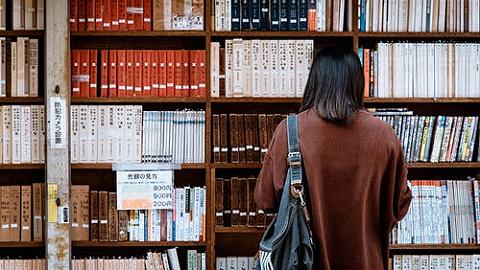跨越式發展高等教育,大灣區掀起大學建設熱潮