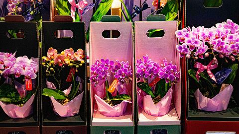 清明假期天津消费市场活跃,实现销售收入5.85亿