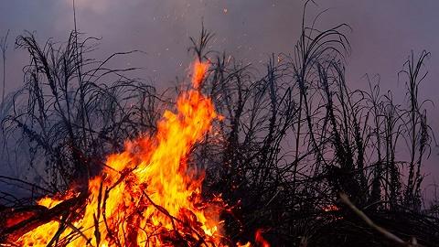 森林草原防滅火不力,四川冕寧縣委書記、縣長被免職