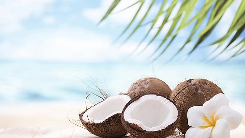 椰汁新品牌凶猛,椰树还坐得住吗?