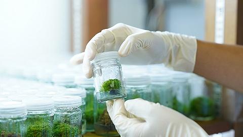 天津围绕细胞生态等重点领域建设海河实验室