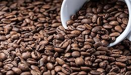 """瑞幸、星巴克殊途同归:中国的万亿咖啡市场,撑不起巨头的""""下沉梦"""""""
