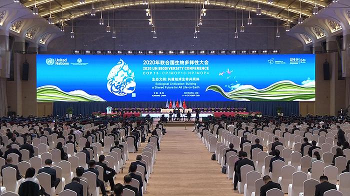 """华信娱乐代理海评面:保护生物多样性,中国""""书写成功故事"""""""