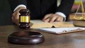 最高法:正制定林权、环境保护禁令、生态环境侵权惩罚性赔偿等司法解释