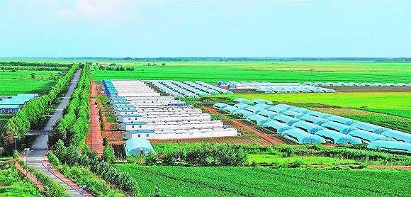 蒋伟涛:乡村振兴战略的五大内涵变革