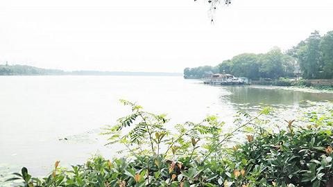 珠海省级碧道试点计划年底建成,为广东万里碧道建设探路