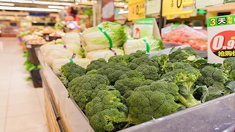 海口椰海叶菜联盟上线每日批发均价发布系统